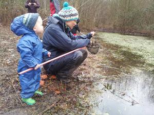 Toddler pond dip web