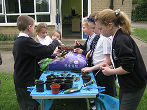 Bell Farm After School Club is now called Treetops!