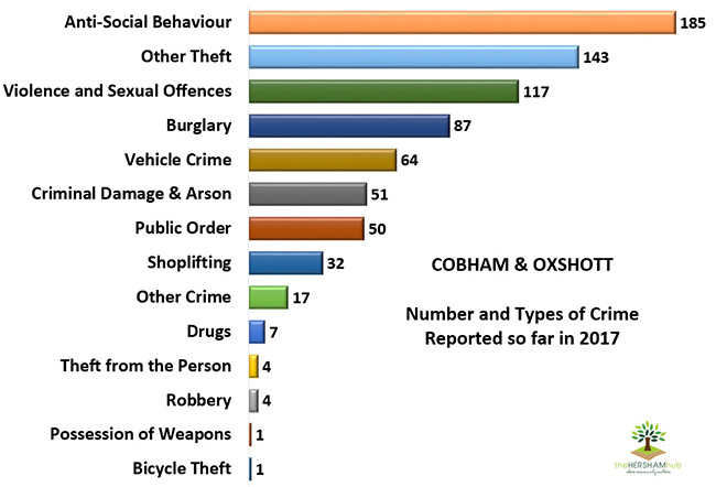 cobham oxshott type of crime 2017x650 1 - Has Local Crime Increased Since The Streetlights In Elmbridge Went Out? We Have The Answer!