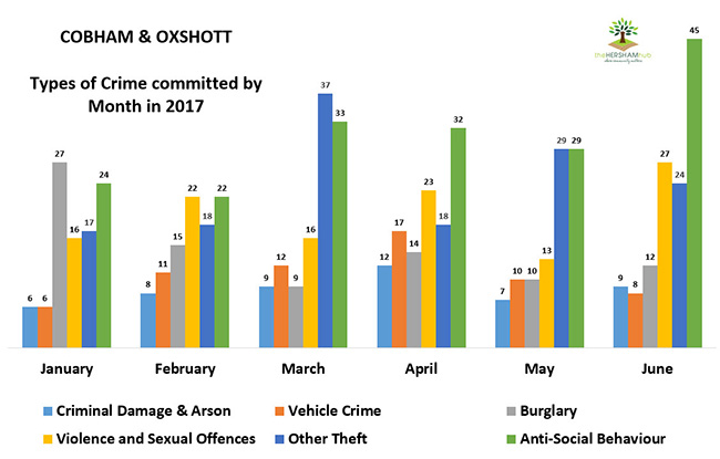 cobham oxshott type of crime by monthx650 - Has Local Crime Increased Since The Streetlights In Elmbridge Went Out? We Have The Answer!