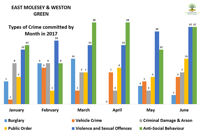 east molesey weston green type of crime by monthx650 - Has Local Crime Increased Since The Streetlights In Elmbridge Went Out? We Have The Answer!