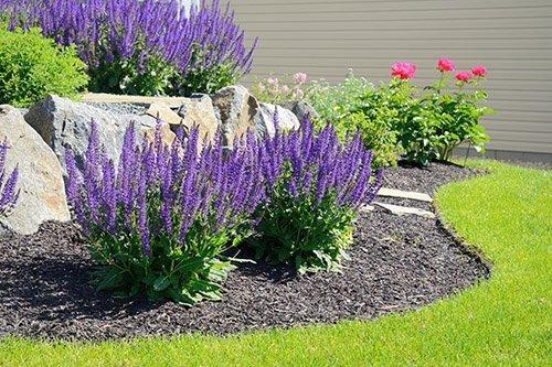 may gardening 500 - Seasonal Gardening Tips