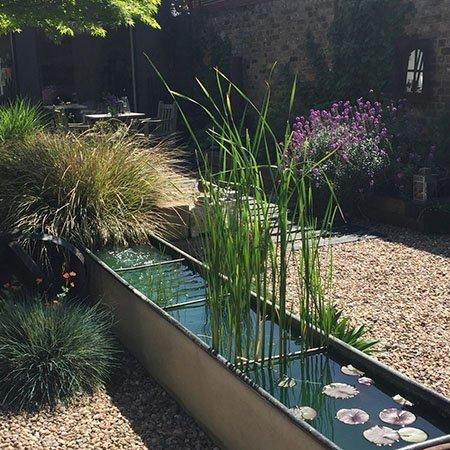 5 Pemberton Road 450 - The National Garden Scheme - Find An Open Garden In Surrey