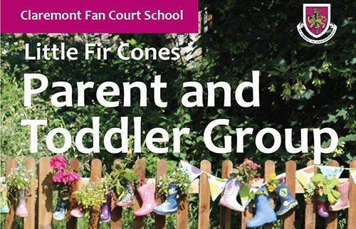 claremont fan court little fir cones feat 500 - Claremont Fan Court School